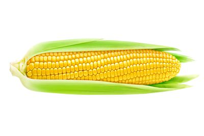 1 large ear of corn is 100 calories