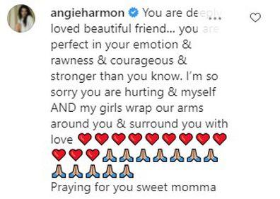 Paulina Porizkova is comforted by Angie Harmon on Instagram.