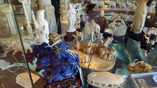 Ivory displayed for sale at a Gold Coast antiques store. Photo: For the Love of Wildlife.