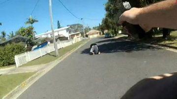 Gold Coast police arrest knife-wielding man following supermarket stabbing.