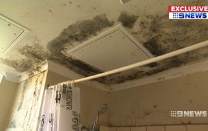 Residents at Sydney housing block sick from mould infestation