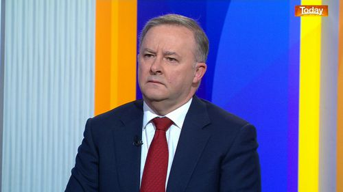 Anthony Albanese has said the Newstart allowance needs to be raised.