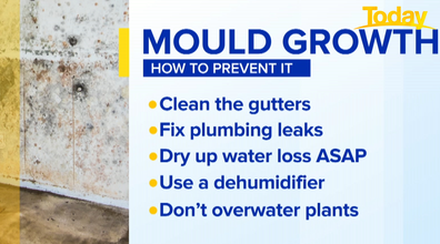 Cleaning tips to prevent mould growth.
