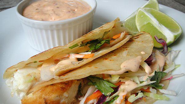 MSC-certified grilled hoki fish taco