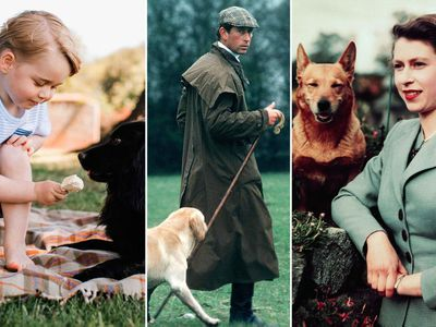 The royals and their dogs