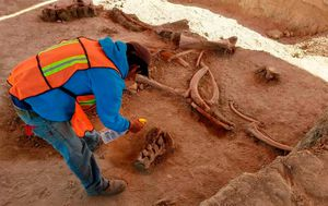 Dozens of mammoth bones found at Mexico airport