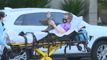 Cairns hotel quarantine alleged escapee