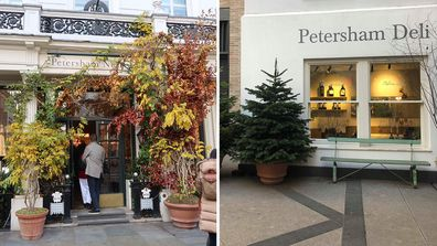 The Petersham in Covent Garden, London