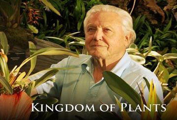 David Attenborough: Kingdom of Plants