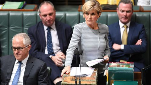 Despite being hugely popular with voters, Julie Bishop crashed out in the first round of the leadership ballot.