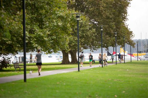 Two cases of suspected dog baiting have been reported to Woollahra Council after owners believe their dogs fell ill at Rushcutters Bay Park.