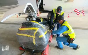 Qantas crews begin 'waking up' planes after coronavirus halt in preparation for domestic travel