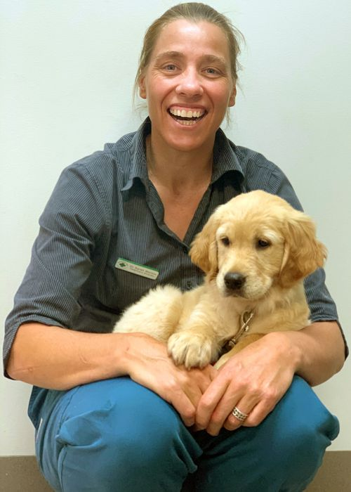 Dr Morton says many vets are struggling to meet the stressful demands of the job.