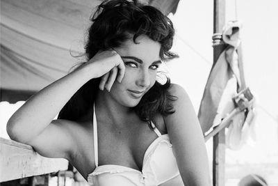 Elizabeth Taylor, classic beauty.