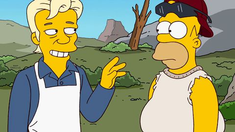 Julian Assange will be on The Simpsons