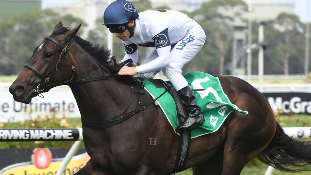 Barrier 13 in the Golden Slipper doesn't spell the end of the world for She Will Reign. (AAP)