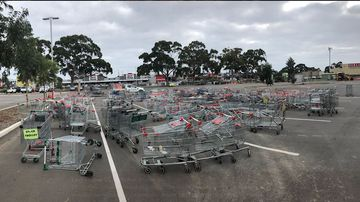 Dumpers be warned, your shopping trolley could be tracked