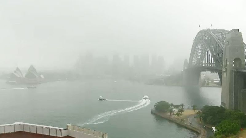 Sydney is set for a rainy Friday, with 25mm expected to fall.