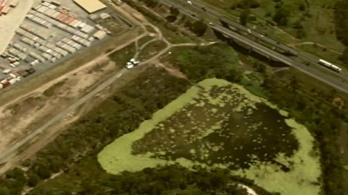 Police have searched a dam in Kingston, near Mudgee Street.