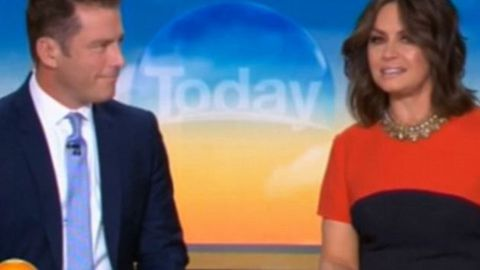 Lisa Wilkinson, Karl Stefanovic