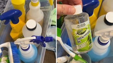 Professional cleaner reveals the products and tools she's got in her cleaning kit