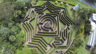 Get lost in Australia's best mazes
