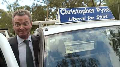 <strong>WINNER</strong><br> Christopher Pyne (Lib, Sturt, SA) - contained major threat albeit with reduced majority.