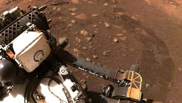 The Perseverance rover on Mars.