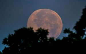Strawberry Moon marks start of 'eclipse season' for astronomy fans