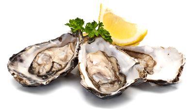 Oysters:16mgper 100g