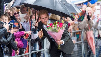 Prince Harry views tributes to his mother Princess Diana, August 2017