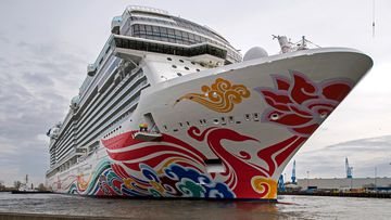 Los Angeles Fire Department paramedics treated 10 people aboard the Norwegian Joy cruise ship for minor medical complaints after the ship docked early Sunday