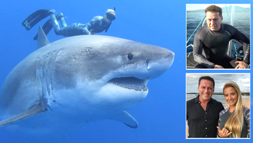The Great White Shark is one of the most feared predators on earth - but for some, such as OCean Ramsey, seen diving alongside a huge 22-foot 2000 kilogram killer earlier this year, they are simplky 450 million years of evolutionary perfection. Don't miss 60 Minutes on Sunday when Karl Stefanovic is thrown to the sharks for a special investigation around the issues.