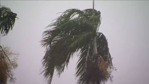 Gale force winds recorded at 130 km/h and winds at the centre of Tropical Cyclone Marcus raged at 95km/h.