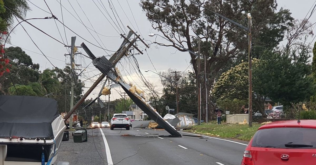 Powerlines down trees toppled: Sydney smashed by 100km/h wind gusts – 9News
