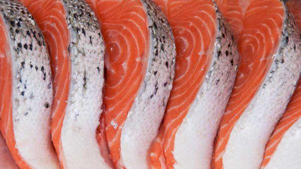 Salmon istock