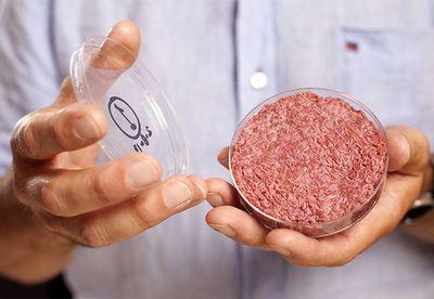Test tube burger