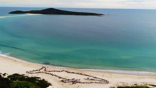 More than 1000 locals stood side by side to form a record 150m whale on Fingal Beach. (Supplied)