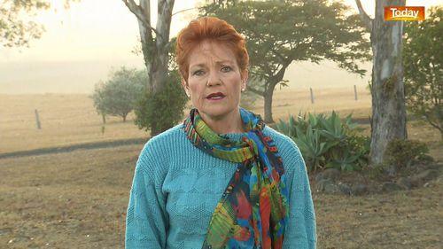 190610 Pauline Hanson government income tax cuts Coalition news politics Australia