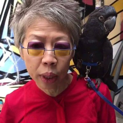 Who needs a Gucci bag when you can have a bird? Lee Lin Chin that's who.