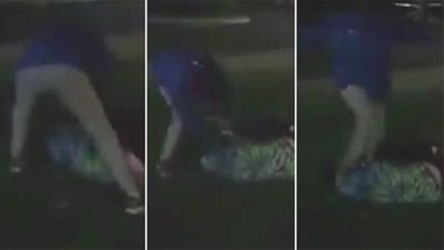 Teenage girl beaten in brutal street brawl