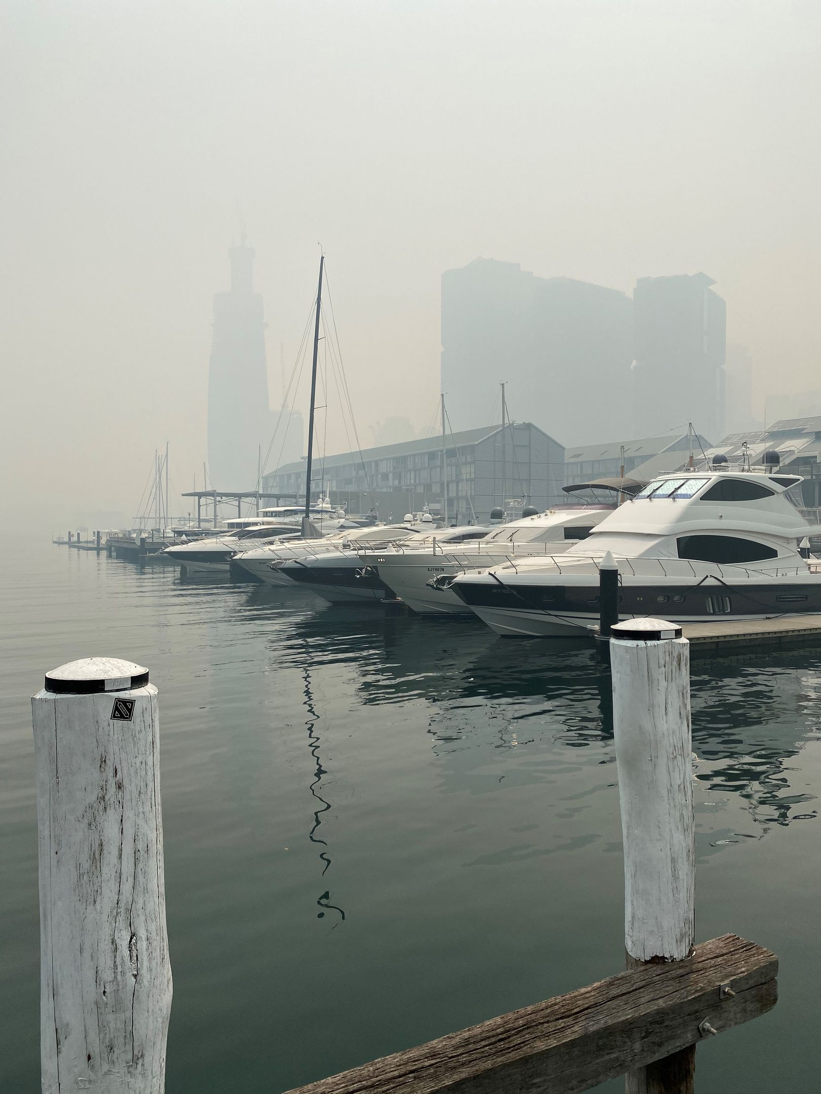 Boats docked in Pyrmont are floating in a sea of smoke.