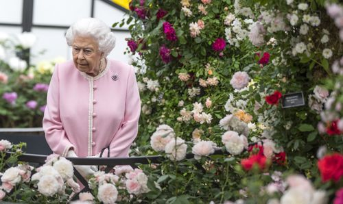 Queen Elizabeth II looks at a display of roses during her visit to this year's RHS Chelsea Flower Show (AAP)