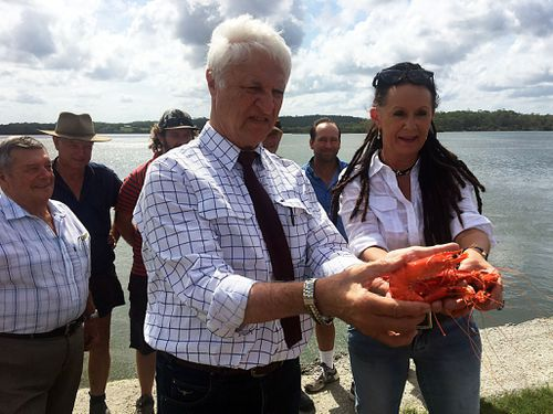 Member of Parliament Bob Katter holds a prawn on the banks of the Logan River, south of Brisbane, Queensland, Tuesday, Feb. 21, 2017.