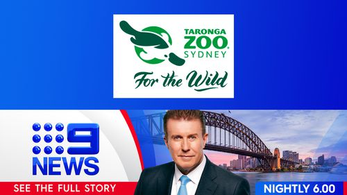 Win 1 of 50 Family Passes to Taronga Zoo