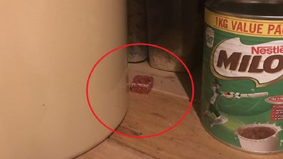 Mouse bait in cupboard photo
