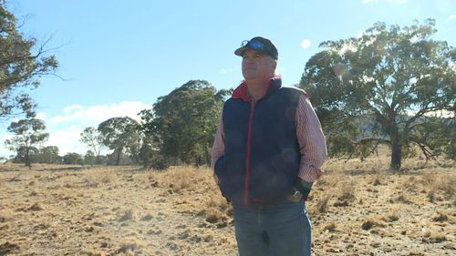 Lanyon farmer Andrew Geikie is feeling the drought, and says they need another 48 - 50mm of rain before October before they're in real trouble. Picture: 9NEWS
