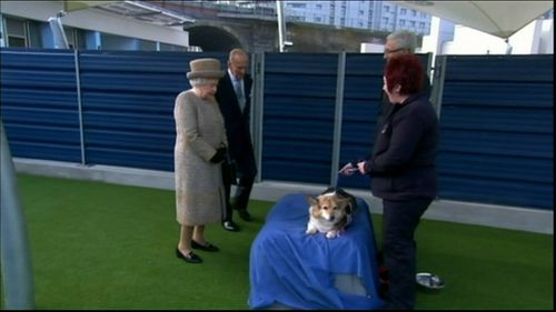 The Queen has owned more than 30 corgis since she gained the throne in 1952.