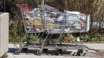 """April 23 2009- Two abandoned shopping carts full of trash on Portland St. and Royal York Rd. Series of photos showing locations where garbage has been strewn -- on boulevards, in parks, on the street etc. There are tires and carpets, shoes, plastic storage bins and a buck that's been on the Lakeshore for who knows how long. It's part of a """"fixer"""" spread for Friday which is 20 minuted makeover day. (Photo by David Cooper/Toronto Star via Getty Images)"""
