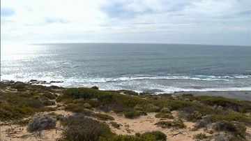 South Australia drowning Browns Beach